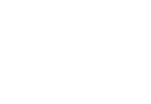 Charlotte Community Foundation